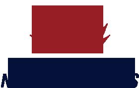 Men's Netball NSW logo